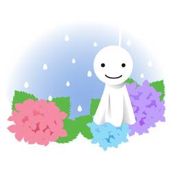 紫陽花 と てるてる坊主